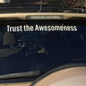 Trust the Awesomeness - 2x19 Die Cut Vinyl Sticker