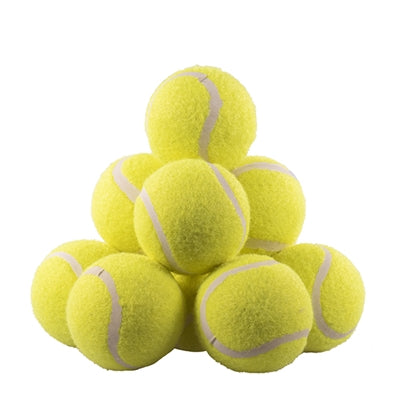 Rosewood jolly doggy tennisbal 12 st