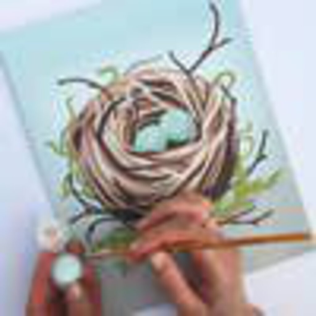 Bird's Nest Paint by Number Kit
