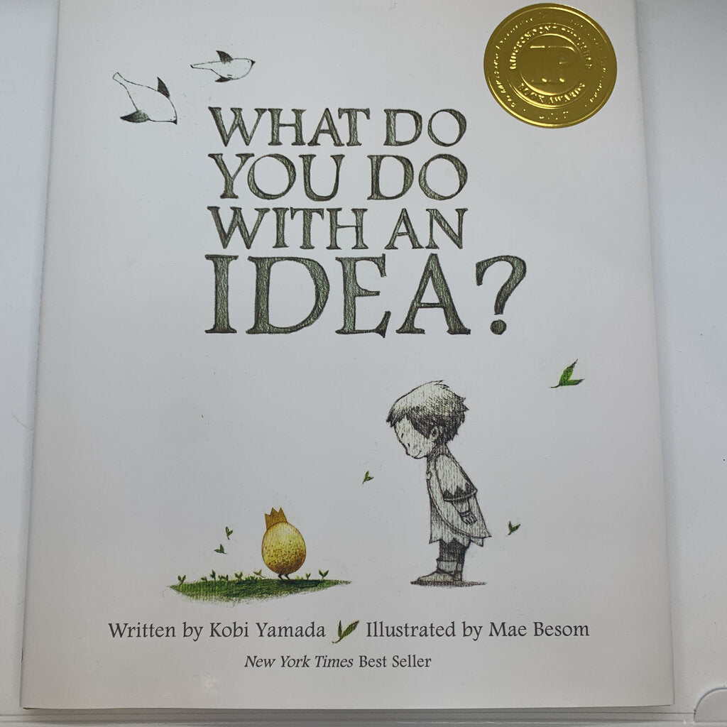 What Do You With An Idea Book