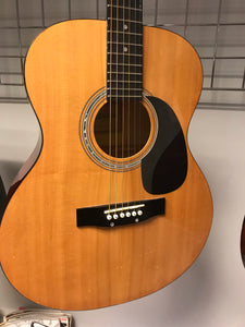 Elevation W-100 Acoustic Guitar