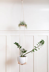 Double Leather Plant Hammock