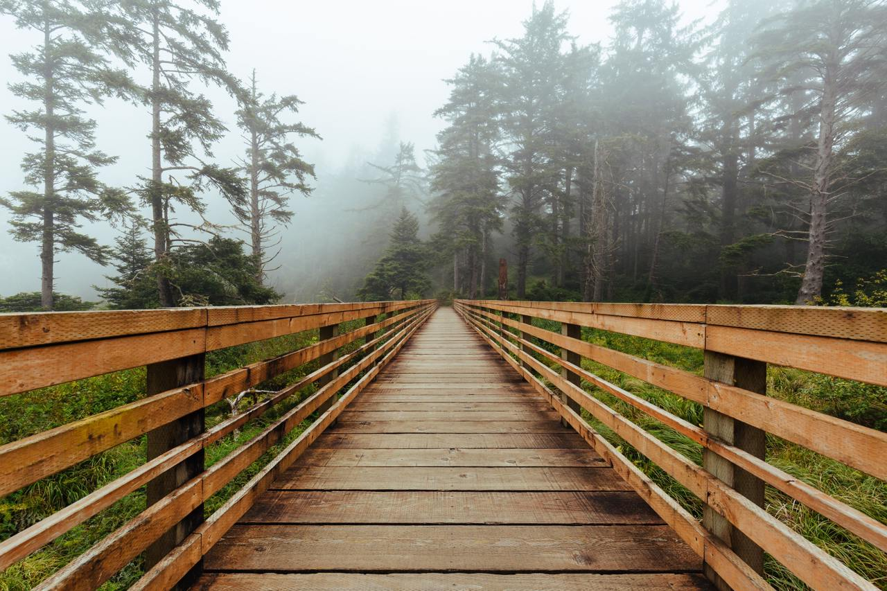 Deck for Walking at Cape Disappointment