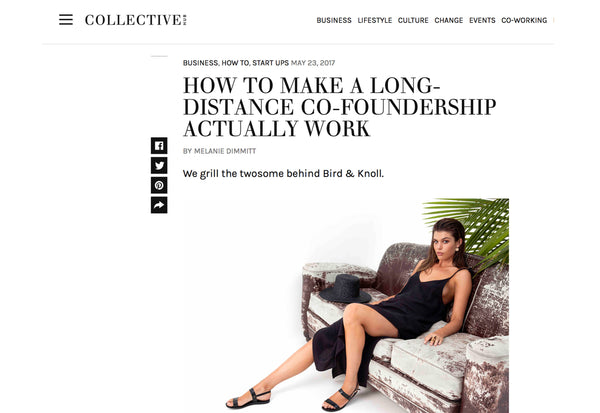 Bird and Knoll in Collective Hub - How to make a long distance co-foundership work