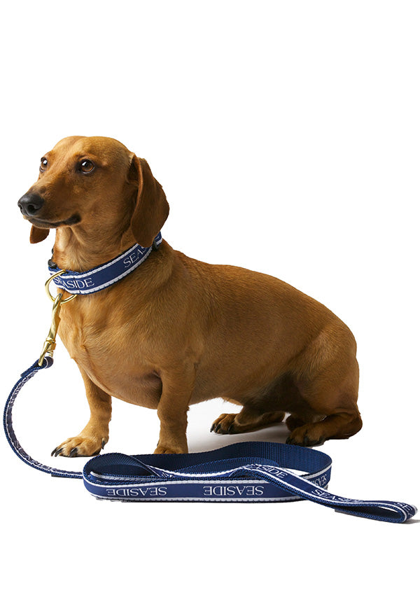 6 foot Navy Blue Bud the Dachshund Seaside Leash