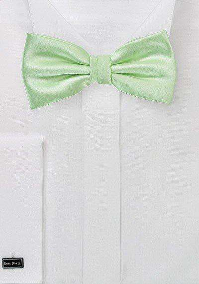 Water Mint Solid Bowtie - Men Suits