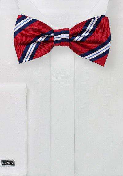 Preppy Red and Blue Repp&Regimental Striped Bowtie
