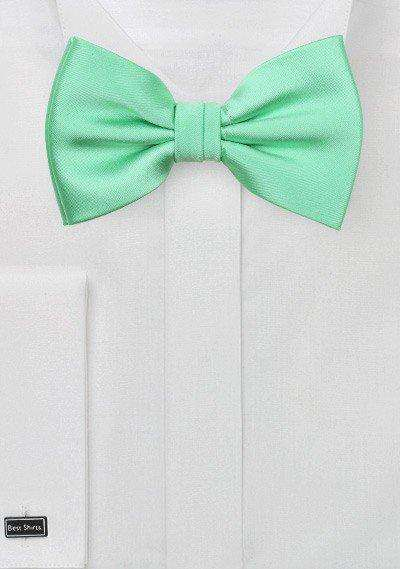 Mint Solid Bowtie - Men Suits