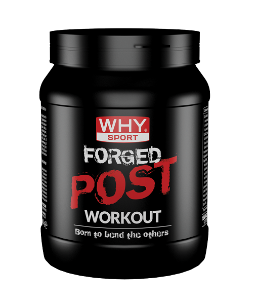 Forged post workout - 600 g in polvere – 20 porzioni