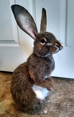 (9B) D2 Naturalistic animal. Cottontail. Stevi Tiangco
