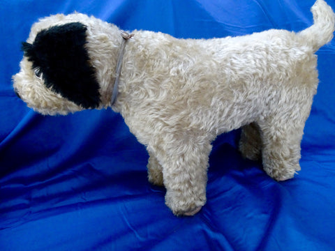 (1920) ISA Button Izzie Dog Sold £270