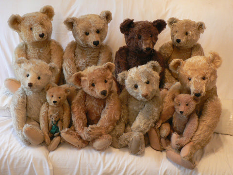 (6V) Stunning Steiffs. Visitors. Teddies of Trenode