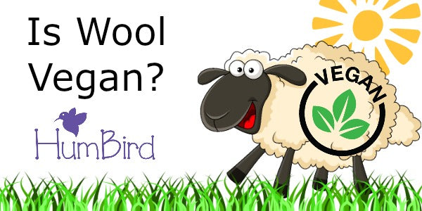 Is Wool Vegan