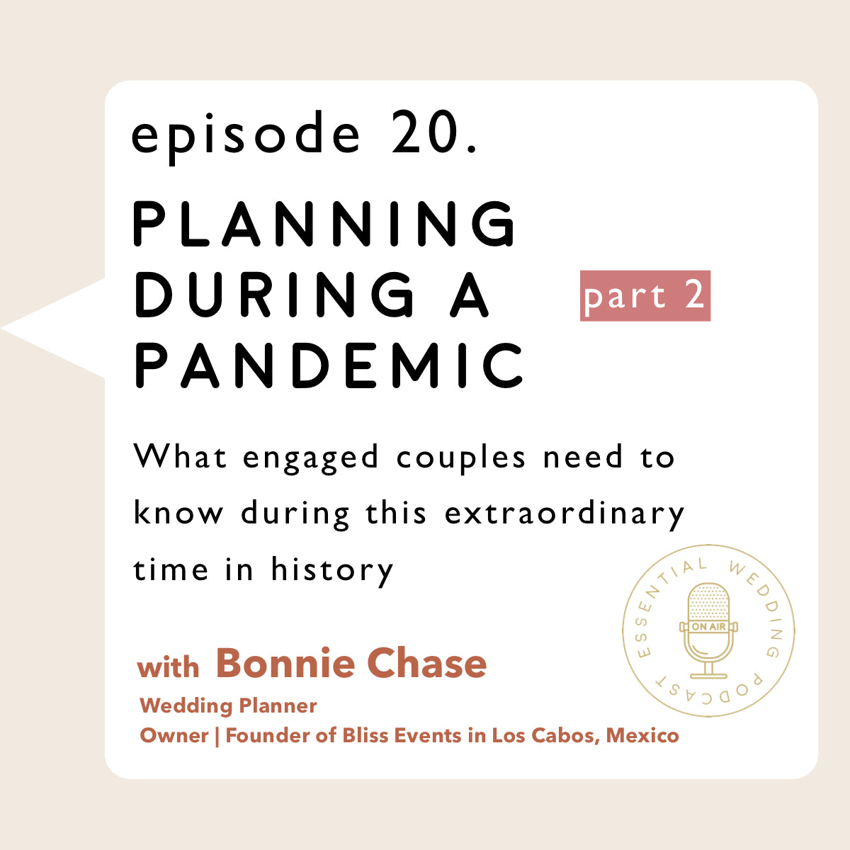 Ep. 20 Planning During a Pandemic pt. 2 w/Bonnie Chase of Bliss Events