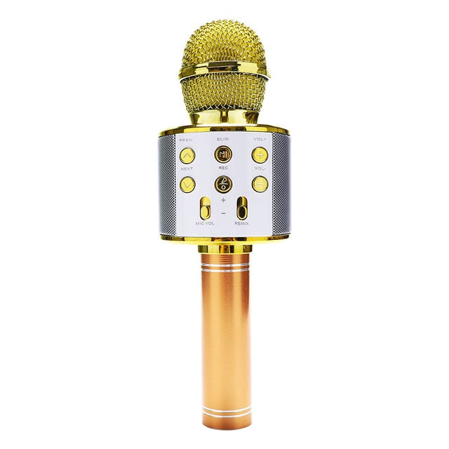Wireless Bluetooth 3-In-1 Karaoke Mic Speaker