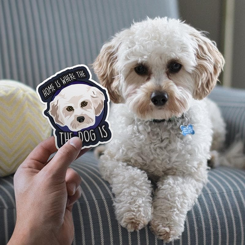 Turn Photos into Custom Drawn Stickers