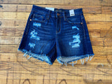 Judy Blue Santa Barbara Shorts