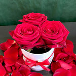 Luxury Cappelliera Small • Rose Rosse