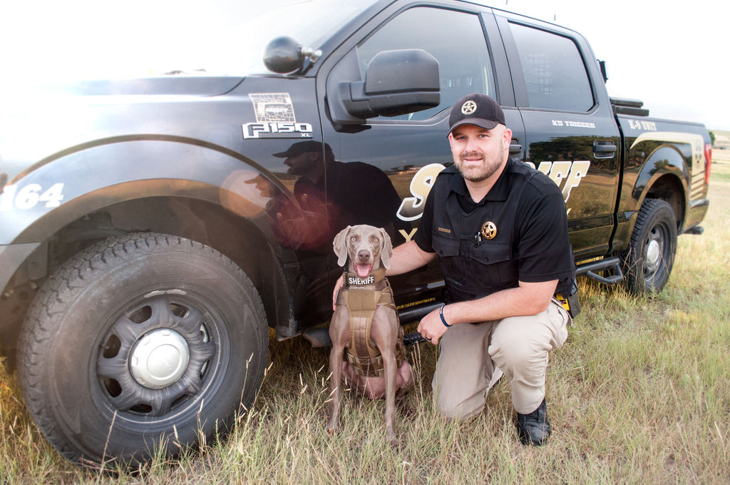 How to Remove Odors from Your K9 Vehicle and K9 Bullet Proof Vest