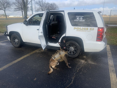 How to remove odors from your K9's vest and K9 vehicle