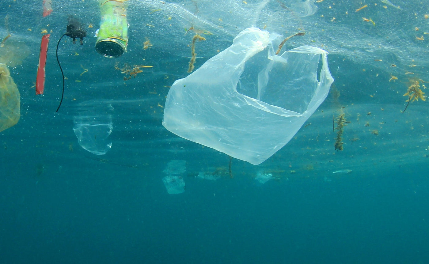 Will Banning Plastic Bags Actually Save the Planet?
