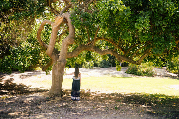 Woman standing next to majestic tree symbolizing imperfect beauty and showing us the soulful side of K-beauty influenced holistic skincare