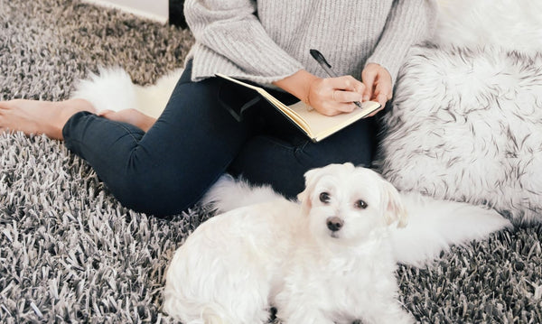 woman writing in journal and setting skincare resolutions for 2020 sitting on fuzzy carpet next to cute white puppy as part of K-beauty influenced holistic skincare habits
