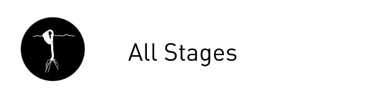 All Stages