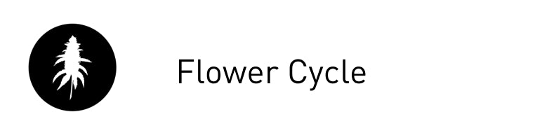 Flower Cycle