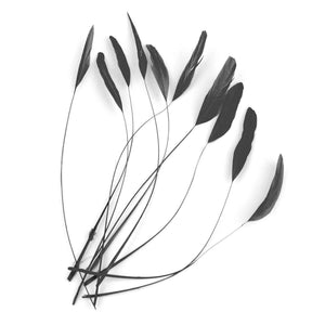 Teardrop tip coque feathers for millinery fascinators and wedding hats CO018
