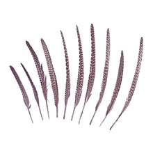 Load image into Gallery viewer, Guinea Fowl Pheasant Wing Feather, 10Pcs for Hats Fascinators and Millinery FE002