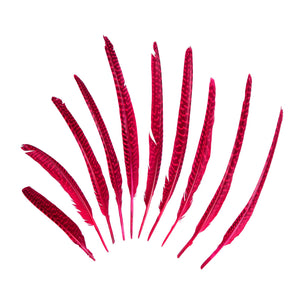 Guinea Fowl Pheasant Wing Feather, 10Pcs for Hats Fascinators and Millinery FE002