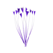 Load image into Gallery viewer, Stripped Turkey Feathers, 10Pcs for Hats Fascinators and Millinery FE004