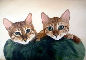 ZZZ3 Commission - Bengal kittens