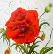 Load image into Gallery viewer, (Z) Pretty Poppy