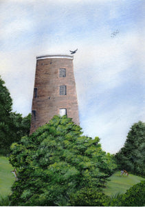 (Y) Woodhorn Mill (sold)