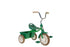 "Classic 10"" Transporter Primavera Tricycle in Green by Italtrike"