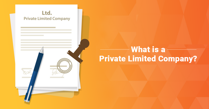 Private Limited Company Definition, Advantage and Disadvantage