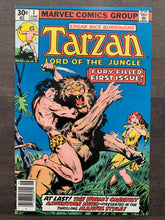 Load image into Gallery viewer, Tarzan #1