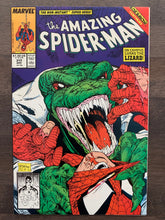 Load image into Gallery viewer, Amazing Spider-Man #313 - Todd McFarlane