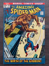 Load image into Gallery viewer, Amazing Spider-Man #110 - Last Stan Lee Story