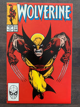 Load image into Gallery viewer, Wolverine #17