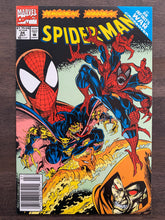 Load image into Gallery viewer, Spider-Man #25