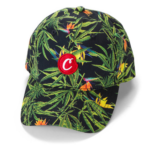 Birds Of Paradise Poplin Dad Hat