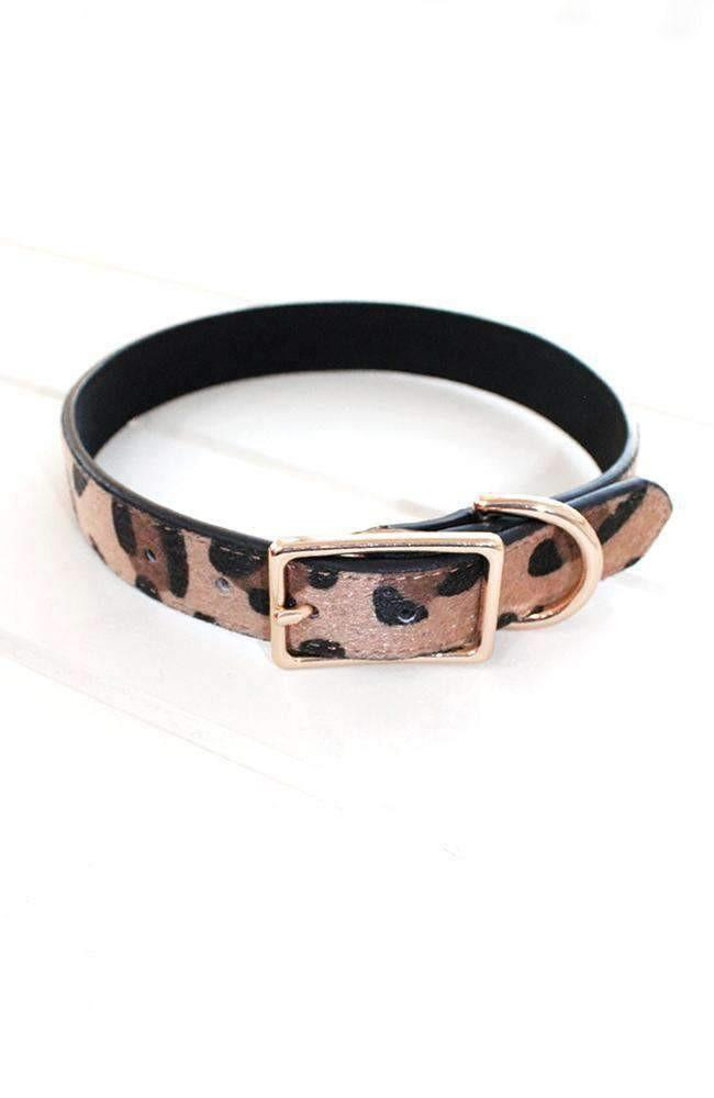 Leopard Vegan Leather Fashion Dog Collar