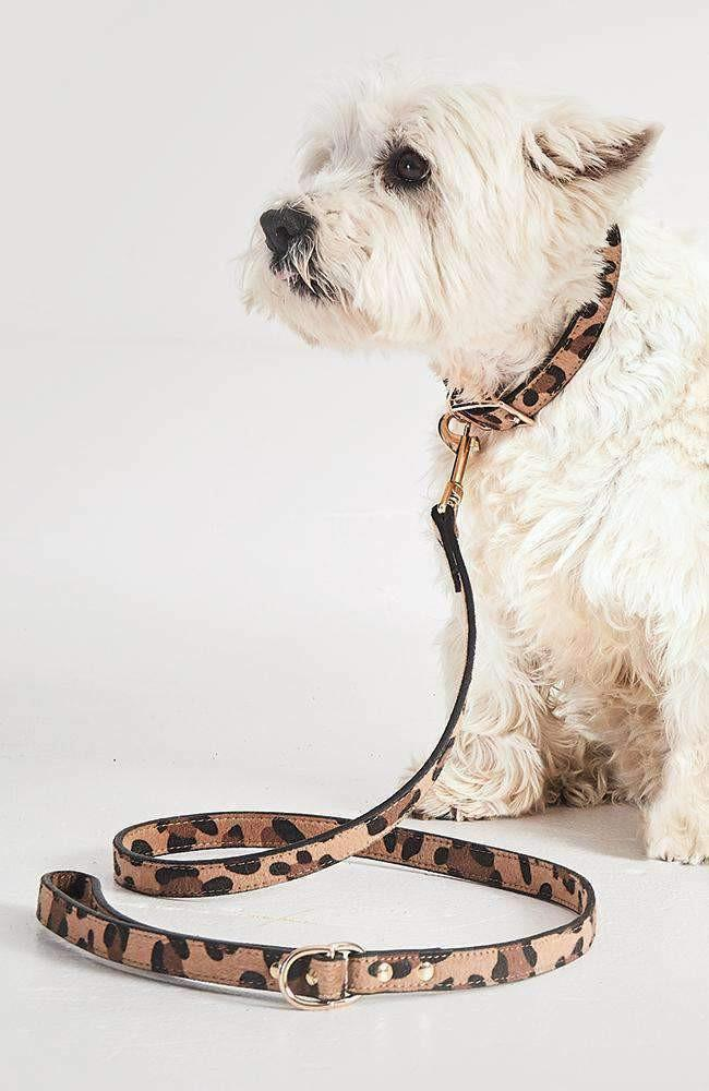 leopard vegan leather fashion dog lead