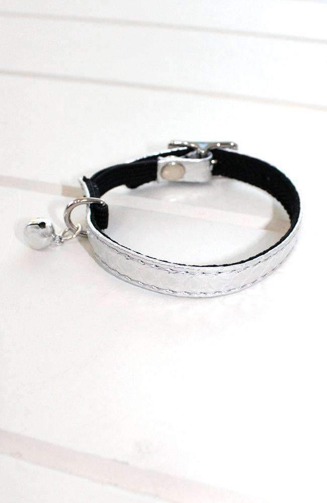 silver metallic crocodile vegan leather fashion kitten cat collar