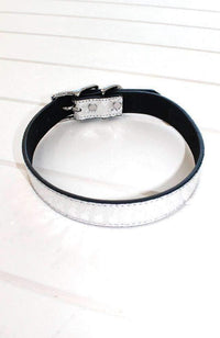 silver metallic crocodile vegan leather fashion dog collar