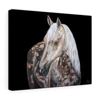 Chesapeake - Canvas Print
