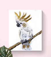 Cockatoo - Canvas Print